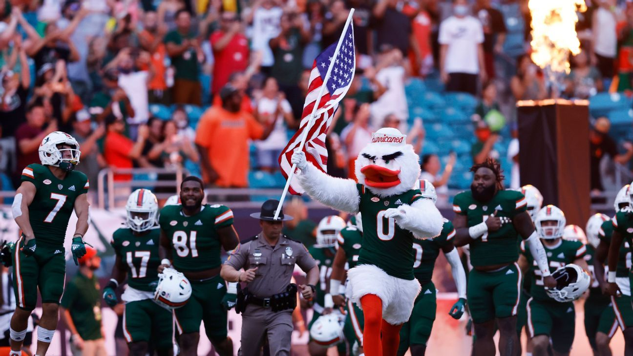 Eight lives left: Falling cat saved at Miami game